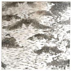 Birch bark panels / Tuohi paneeleita Domus Classicalta edullisesti  Tuohipaneli 60 x 60 cm - Domus Classica verkkokaupasta