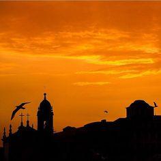 Let a new week begin!  #visitporto #followporto -- Que uma nova semana comece!  #visitporto #followporto  Credits: @nomadisbeautiful #igers_porto #igersportugal #igersopo #igers_opo #ig_travel #travelgram #igers_travel #travel #explore  #traveling #momondo #natgeotravel #viagem #tourism #turismo #visitportugal #travelbloggers #traditional #lonelyplanet #porto #beautifuldestinations #vsco #citybreak  #worldheritage #sunset #view by visitporto