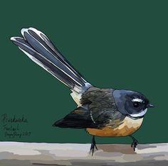 Pīwakawaka (Fantail) on Photo Block Photo Blocks, Photo Reference, New Zealand, Birds, Website, Digital, Prints, Painting, Animals