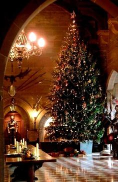 Cristhmas Tree Decorations Ideas : Warwick Castle – England at Christmas The Best Of Christmas, Beautiful Christmas Trees, Noel Christmas, Merry Little Christmas, Primitive Christmas, All Things Christmas, Winter Christmas, Christmas Lights, Vintage Christmas
