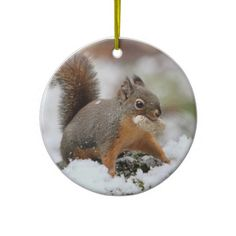 Shop Cute Squirrel in Snow with Peanut Ceramic Ornament created by funnaturephotography. Picture Christmas Ornaments, Christmas Holidays, Holiday Gifts, Christmas Gifts, Cute Squirrel, White Porcelain, Personalized Gifts, Snow, Ceramics