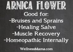 I recently took homeopathic arnica for bruising and want to learn to grow and use it at home. This Wellness Mama info is vital to doing so safely, as arnica can't be used in undiluted form topically and isn't safe to take internally in a homemade tea or otherwise.