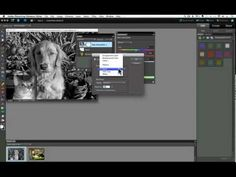 Adjustment Layers Part1 For Photoshop Elements