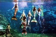 This looks undoubtedly like Weeki Wachee! (mermaid via Tumblr) The Weeki Wachee Mermaids wearing mertailor tails. Photo by John Athanason.