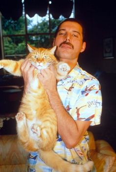 See the latest images for Freddie Mercury. Listen to Freddie Mercury tracks for free online and get recommendations on similar music. Queen Freddie Mercury, Freddie Mercury Tattoo, Freddie Mercury Quotes, I Love Cats, Crazy Cats, Cool Cats, Freedy Mercury, Patricia Highsmith, Celebrities With Cats