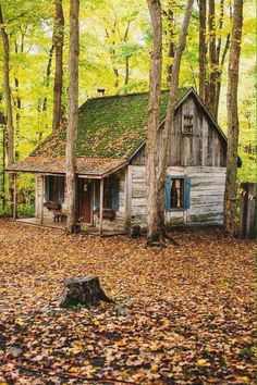Cabins And Cottages: Northern Bushcraft : Photo I'd put a metal roof on it with all the leaves and sticks etc falling and laying on the roof all the time. Shingles wouldn't last long. Old Cabins, Log Cabin Homes, Cabins And Cottages, Cabins In The Woods, Rustic Cabins, Abandoned Houses, Old Houses, Tiny Houses, Little Cabin