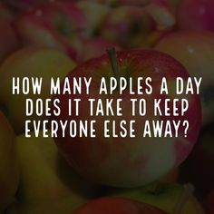 I'm going to buy apples in bulk so I have more to throw. apples howmany bulk keepaway everyone introvert intj Buy Apple, Intj, Everyone Else, Introvert, Qoutes, Hilarious, Funny, Laughter, Take That