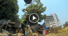 Vídeo Mostra o Que Acontece Todos Os Dias Aos Cães De Rua http://www.funco.biz/video-mostra-o-que-acontece-todos-os-dias-aos-caes-de-rua/