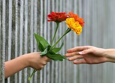 A small flower to a stranger, helping someone carry a bag, watering a sick neighbors yard, compliment someone just to make them smile. Simple acts of kindness can mean the world to someone. Make your own heart lighter and share some kindness today.