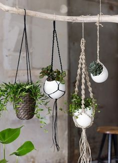 hanging baskets A macrame plant hanger is a great idea for any space. Throw it back to style with an adorable macrame plant hanger! Add more greenery and life to room! Macrame Plant Hanger Patterns, Macrame Plant Hangers, Macrame Patterns, Diy Macrame, Macrame Modern, Macrame Curtain, Macrame Knots, Indoor Plant Hangers, Macrame Mirror
