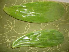 Organic Lizard SuperFood (3lbs), Pampered Reptile Food