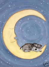 Cindi Lynch Watercolor - signed folk art print - Miniature Schnauzer (uncropped ears) naps on moon