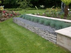 gabions garden wall plants - Google Search