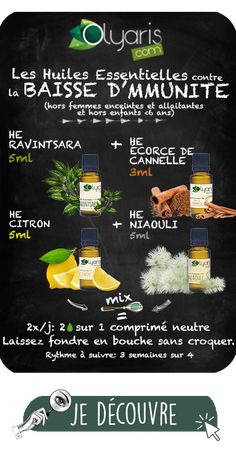 Les Huiles Essentielles Antibactériennes : le Dossier Complet par Olyaris - Body Workouts For Cutting Body Fat - The Best Exercises for a Full-Body Workout Ab Workout At Home, At Home Workouts, Boxing Workout, Antibacterial Essential Oils, Ravintsara, Digital Detox, Coconut Health Benefits, Diy Projects For Beginners, Essential Oils