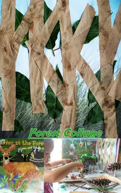 Over in the Forest: Leaves Collage and Forest Small World Preschool Activities