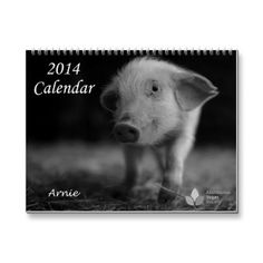 2014 Calendar of The Abolitionist Vegan Society