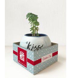 Taza KISS ME! Regalo ideal para él <3 Maceta decorada con caja de regalo