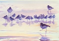 Oystercatchers and sanderlings by Emma Price Bird Paintings, Bird Drawings, Painting & Drawing, Wildlife, Birds, Watercolor, Artist, Paintings Of Birds, Pen And Wash