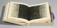 Jasper Johns - Samuel Beckett. Foirades / Fizzles. London, Paris, and New York: Éditions de Minuit & Petersburg Press, 1976