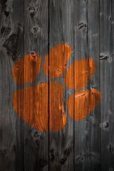 Tiger paw... for Auburn AND Clemson!!