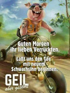 Guten morgen an alle - Holger Reichel - Google+