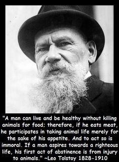 Do animals deserve rights essay