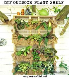 DIY Outdoor wall plant shelf with burlap at http://empressofdirt.net/diyplantshelf/