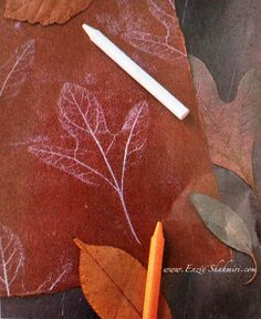DIY Fall Project - Tracing Leaves