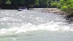 Kiulu Sabah Malaysia - Circa September 2015 : A Group Of Tourist Seen Doing White Water Rafting At Kiulu River. Kiulu River Is Popular Among Tourist For Easy Rafting With Nice Nature Scenery River. Stock Footage Video 11766164 - Shutterstock