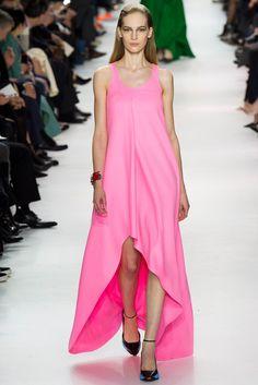 Christian Dior Fall 2014 Ready-to-Wear Fashion Show - Vanessa Axente (Viva)