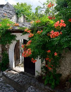 Ottoman architecture in Blagaj, Bosnia. Blagaj is a village-town in the south-eastern region of the Mostar basin, in the Herzegovina-Neretva Canton of Bosnia and Herzegovina. Mountainous Terrain, Triomphe, Bosnia And Herzegovina, Beautiful Gardens, Countryside, Garden Design, Beautiful Places, Places To Visit, Exterior