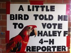 campaign student council school campaign A little bird told me to Vote for __ with parrot poster cut out. School Campaign Ideas, School Campaign Posters, Student Council Campaign, Student Council Posters, Homecoming Poster Ideas, Homecoming Signs, Homecoming Queen, Campain Posters, Campaign Signs