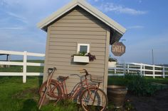Old out house turned potting shed