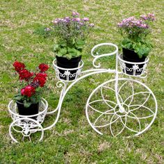 Check out this Derco 3 Pot Tricycle Planter Stand! Made from wrought iron, this… Exotic Flowers, Beautiful Flowers, Flower Vases, Flower Pots, Flower Cart, House Plants Decor, Flower Stands, Garden Structures, Plant Wall