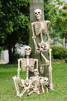 Crazy Bonez family photo