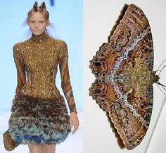 THE INSPIRATION BEHIND ALEXANDER MCQUEEN SPRING 2010 are Moths Sarah Burton, Animal Fashion, Fashion Art, Fashion Themes, Philip Treacy, Moda Animal, Blusas Animal Print, Atlantis, Fashion Designer