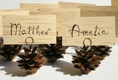 100 pcs Real Pine Cone Place Card Holders and Birch Bark by tepido
