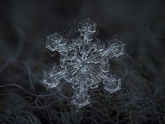 platki sniegu >>Alexey Kljatov