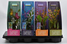 Winnaar NL Packaging Awards 2018 Categorie Non-Food Creative Design Agency, Orchids, Awards, Packaging, Garden Ideas, Beautiful, Hot, Wrapping, Landscaping Ideas