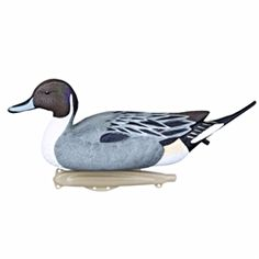 Storm Front™2 Classic Floater Pintail - 6-Pack storm, storm front, front, storm front decoys, stormfront decoys, stormfront decoy, storm front decoy, uvision, u vision, u-vision, uv, duck, ducks, waterfowl, duck decoy, duck decoys, decoy, decoys, premium, premium pintail, pack, hunting, duck hunting, duck hunting decoy, Pintail duck decoy, fathers day gift, gift for him, Christmas gift for him, realistic decoy, realistic hunting decoy,