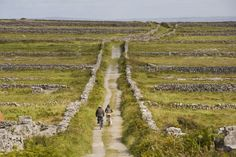 Inis Mór - (meaning big island) as its name suggests is the biggest of the 3 Aran Islands, Ireland Roads And Streets, Take The High Road, County Clare, Back Road, Photo Checks, Big Island, British Isles, Pathways, Beautiful Places