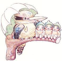 """May Gibbs Artwork met mijn favoriete vogel de """"Kookaburra"""" Australian Artists, Australian Native Flowers, Artists For Kids, Art For Kids, Baby Art, Book Images, Children's Book Illustration, S Pic, Botanical Prints"""