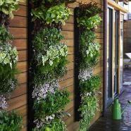 Verticaal tuintje - Eigen Huis en Tuin