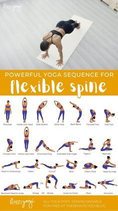 Fitness Workouts, Gym Workout Tips, Workout Videos, Fitness Motivation, Yoga Videos, Cardio Workouts, Gym Workout For Beginners, Yoga Poses For Beginners, Easy Yoga Poses