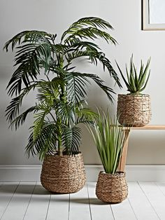 NEW Three Seagrass Basket Planters - Indoor Plant Pots & Planters - Decorative Home Accessories - Luxury Homeware