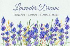 Watercolor Lavender Clip art by LarysaZabrotskaya on @creativemarket