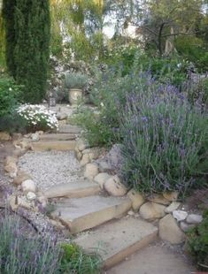 Smart Ideas for Sloped Garden Design Picture 1 - Landscaping A Slope, Landscaping With Rocks, Modern Landscaping, Landscaping Ideas, Garden Steps, Garden Paths, Provence Garden, Provence Style, Mediterranean Garden Design