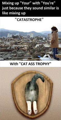 Oh la la, catastrophique! 8)