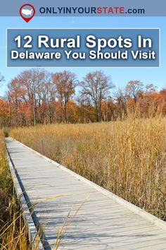 Rural Delaware is never too far of a drive, but these places in the boonies of the Diamond State are real hidden treasures that you should check out. Delaware Attractions, Map Of Delaware, Delaware Restaurants, Dover Delaware, Delaware State, Delaware Life, Lewes Delaware, Best Places To Travel, Places To See