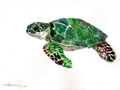 Green Sea Turtle Original watercolor painting 9 X by ORIGINALONLY, $28.00